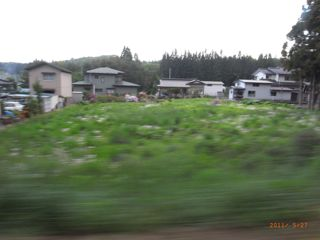 米田から中学校へぬける